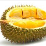 Durian Musang King Malaysia : Sejarah Singkat dan Ciri-Ciri Buah yang Asli