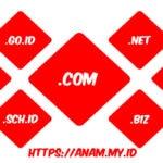 Yuk Kenali Jenis Jenis Nama Domain Beserta Fungsinya Di Sini