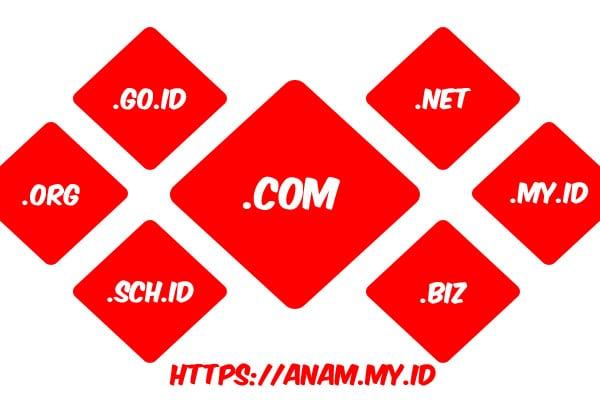 Ekstensi Domain Anam SEO